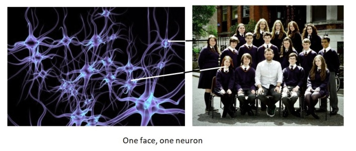 One face, one neuron